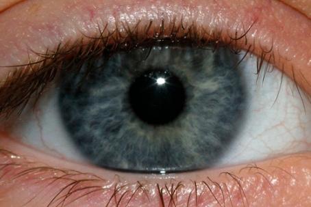 blue-eye.jpg?w=455